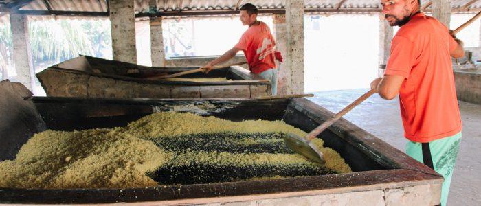 barreirinhas-maranhao-casa-da-farinha-producao
